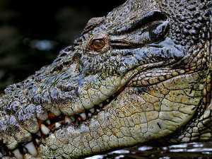Boy eaten alive by croc in front of siblings