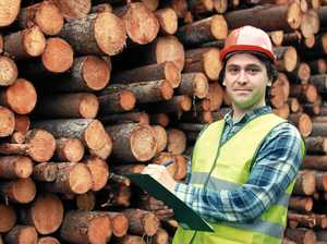 Senator lashes out at State Govt over timber industry