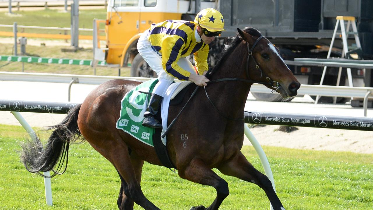Grinzinger Allee won easily at Cranbourne on Sunday. Picture: Getty Images