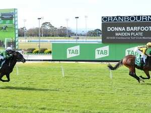 Guineas the goal for plunge horse