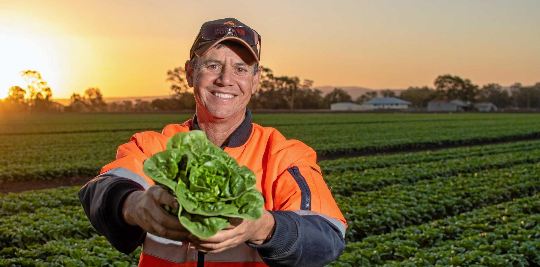 Vegetable grower Anthony Staatz, of Koala Farms, Lake Clarendon.