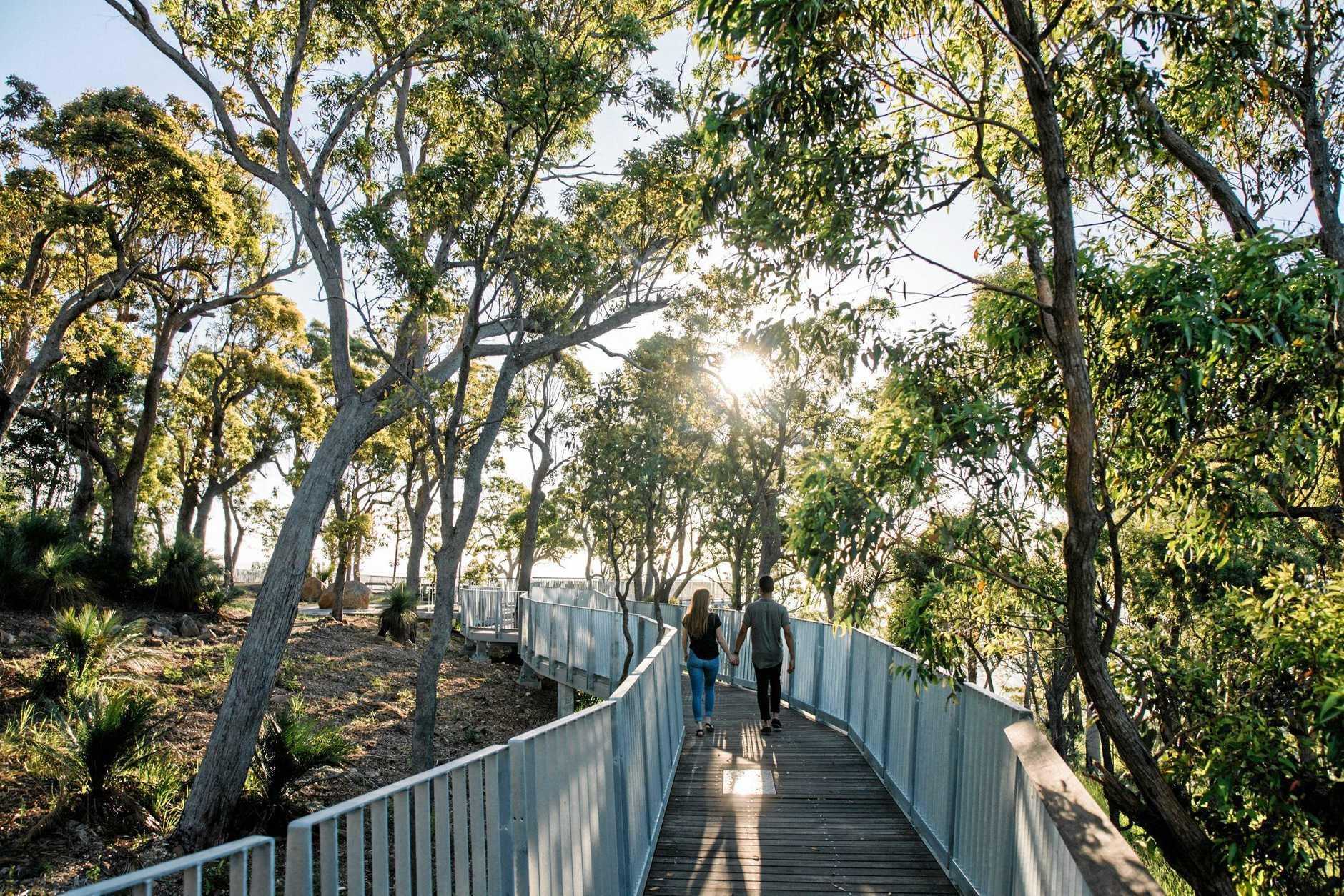 Nurim Circuit boardwalk on Mt Archer has made the shortlist int eh Australian National Timber Awards.