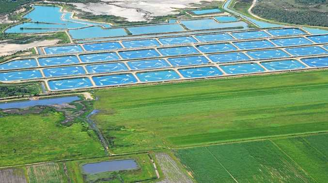 Major aquaculture player gives new project green light