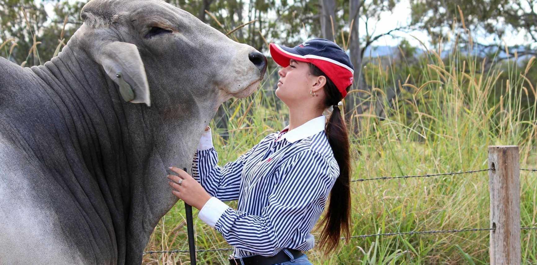 TRUE BLUE: Blue Blood Brahmans' Eloise Kurtis with Lot 24 destined for Woolooga Bull Sale.
