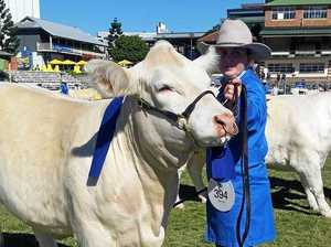There's no bull with this Ekka combination