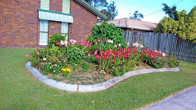 Bay garden guru shares hot tops for spring gardening