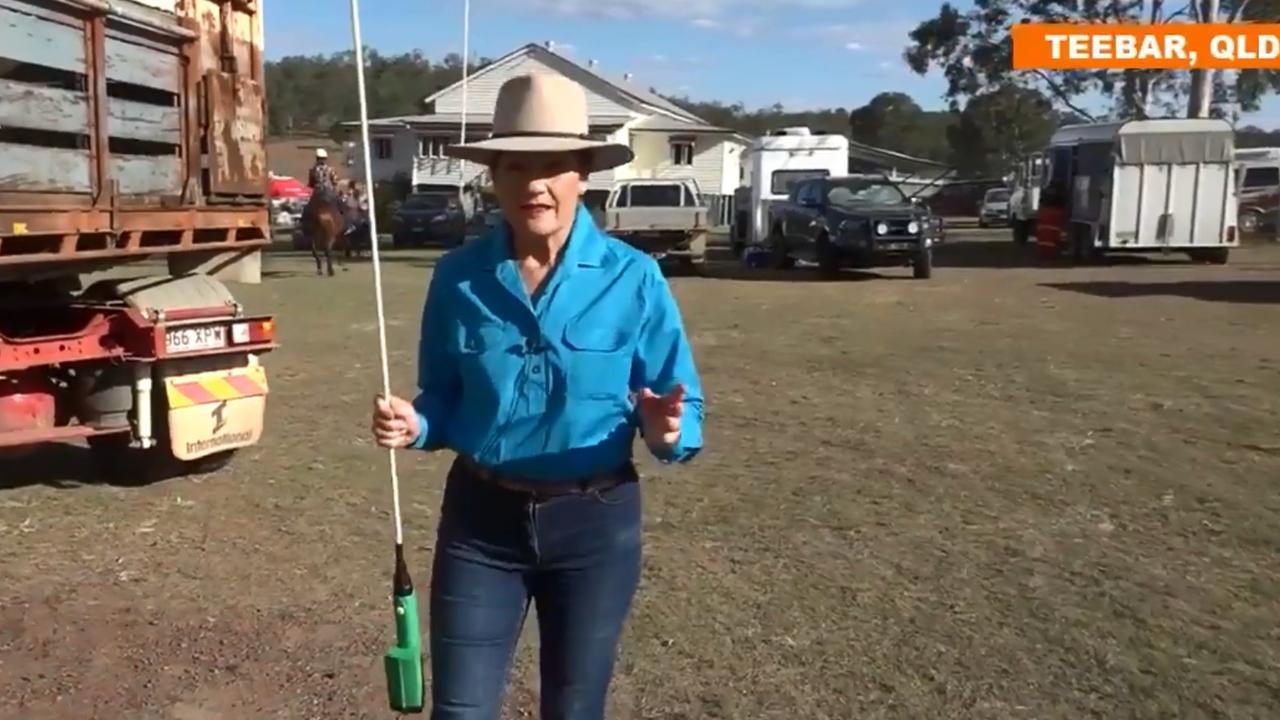 Pauline Hanson's latest stunt has been mocked. Picture: Twitter