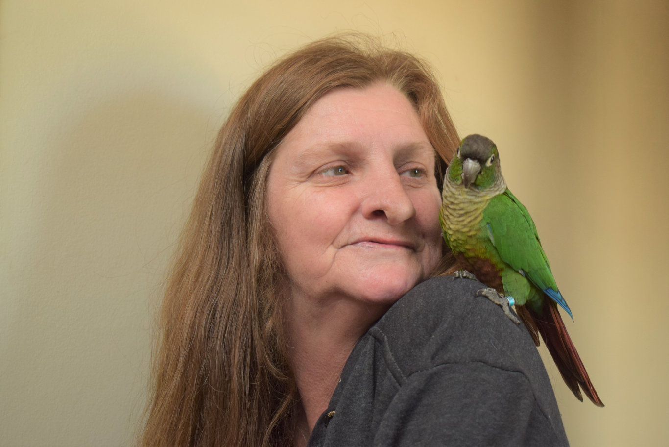 REUNITED: Janice Robins with her pet bird Lollie who miraculously made it home after being stolen along with three of Janice's other birds two months ago.