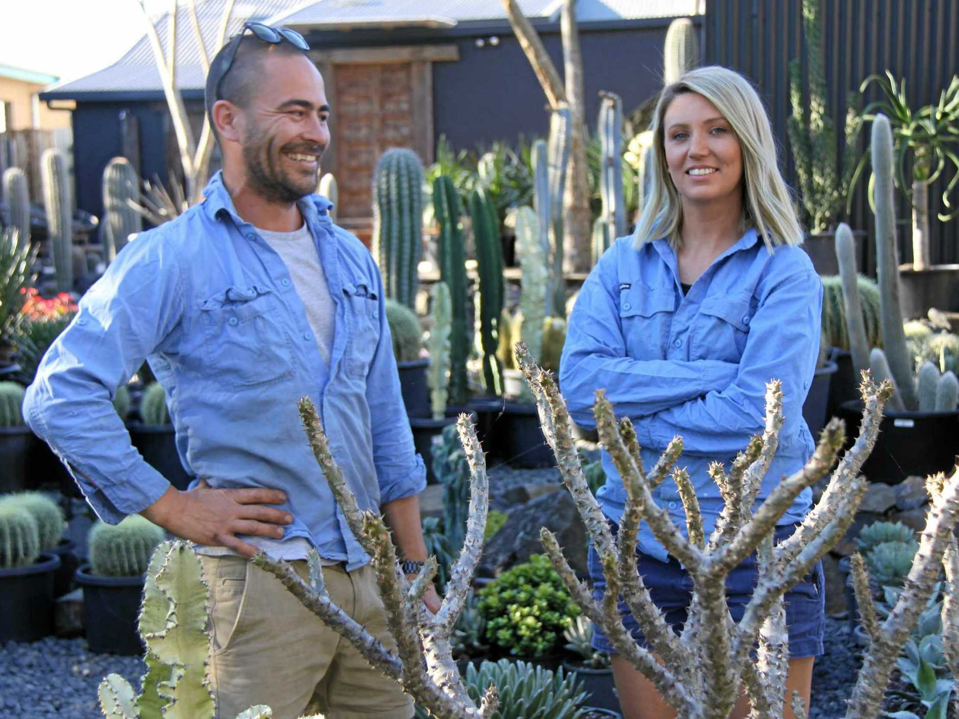 SOPHISTICATED APPROACH: Jesse and Cass Adams moved to the Northern Rivers to establish their landscaping and garden design consultancy, Beautiful Gardens Exotic Nursery, which features sophisticated and textural succulents and cacti plants.