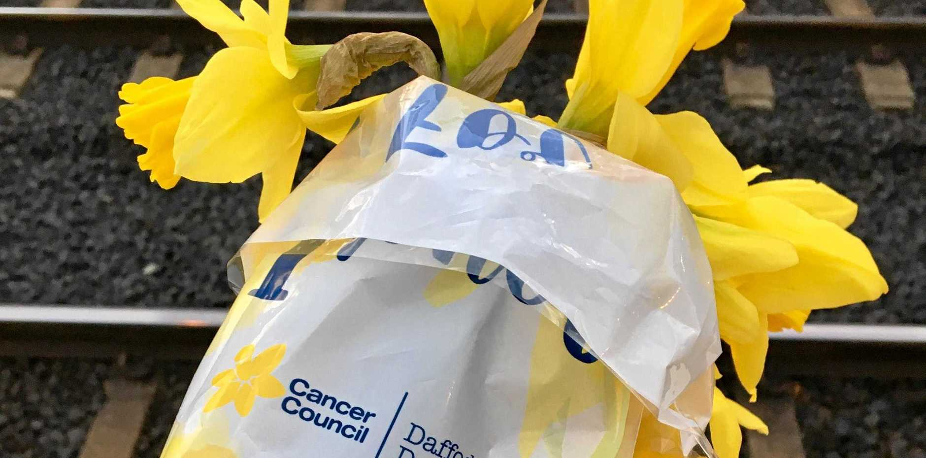 Climb on board the fundraising effort this Daffodil Day.