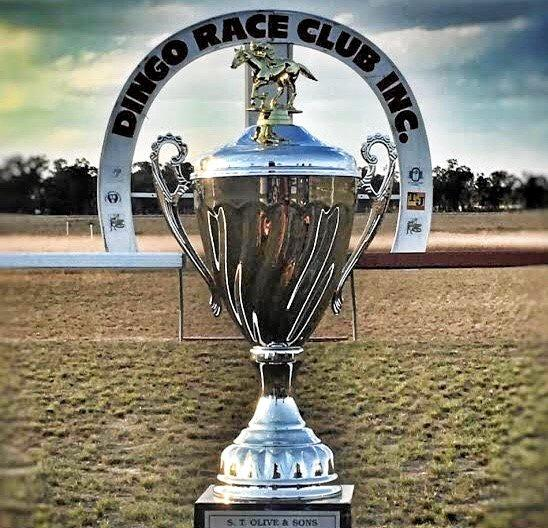 RACE READY: The 30th edition of the Dingo Cup.
