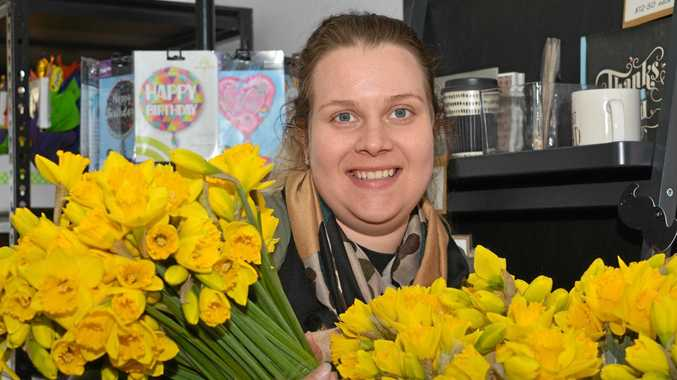 Daffodil day blooms one flower shop into yellow