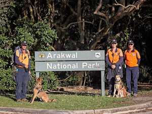 Search dogs come to help look for missing backpacker