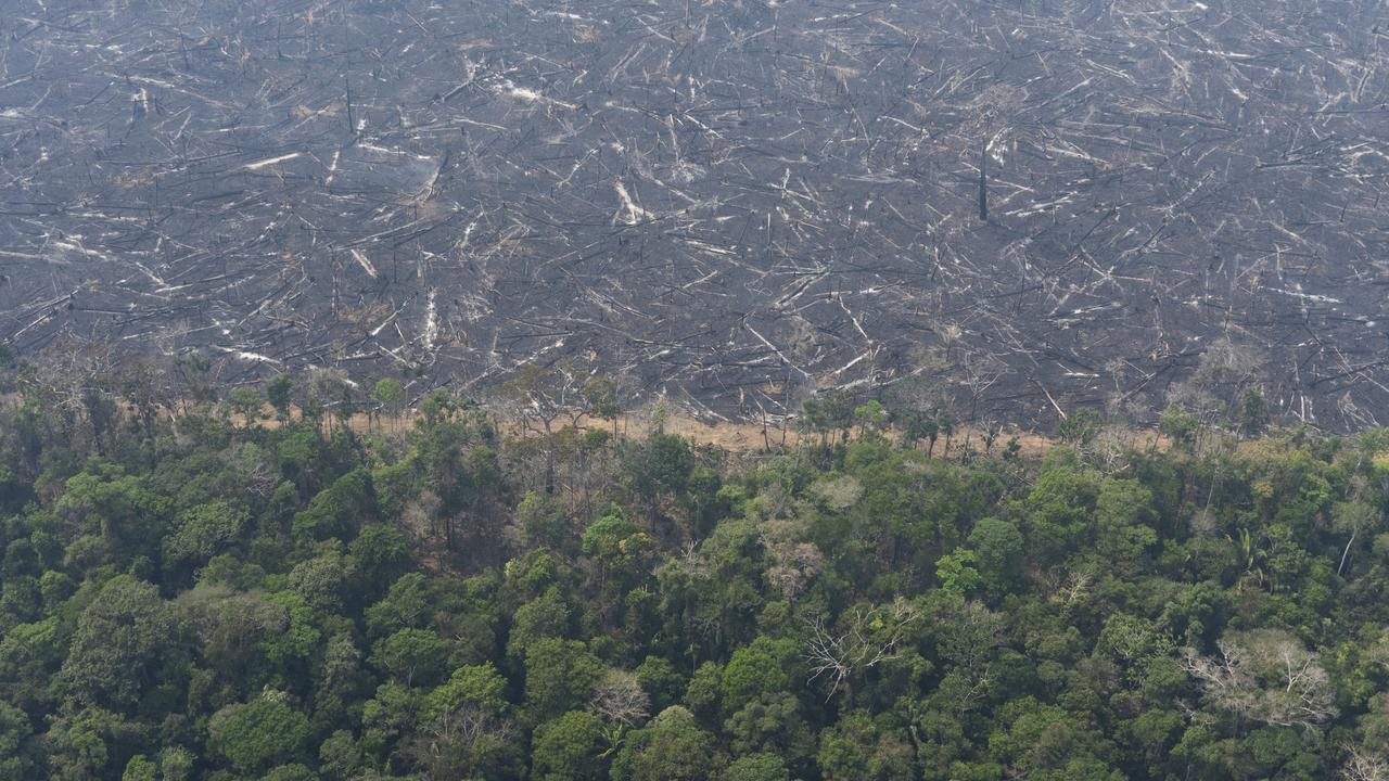 A lush forest sits next to a field of charred trees felled by wildfires near Porto Velho, Brazil. Picture: AP/Victor R. Caivano