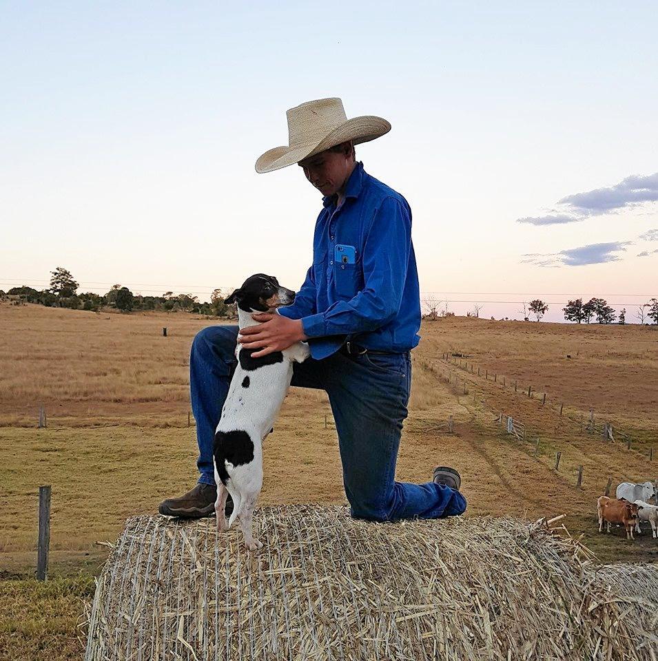 Cowboy's best friend.
