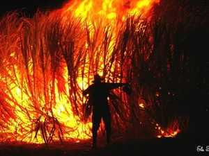 Bundaberg cane fires 2019
