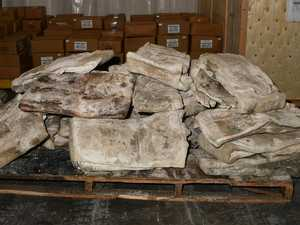 Holy cow: Record 755kg meth haul found in frozen hides