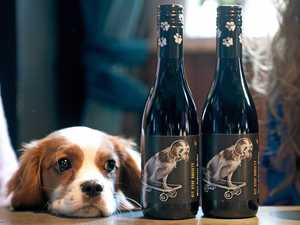Good cause: this wine helps rescue pets in need