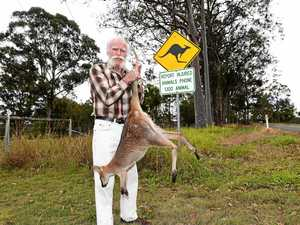Gympie bloke begs for kangaroo carnage on his road to end