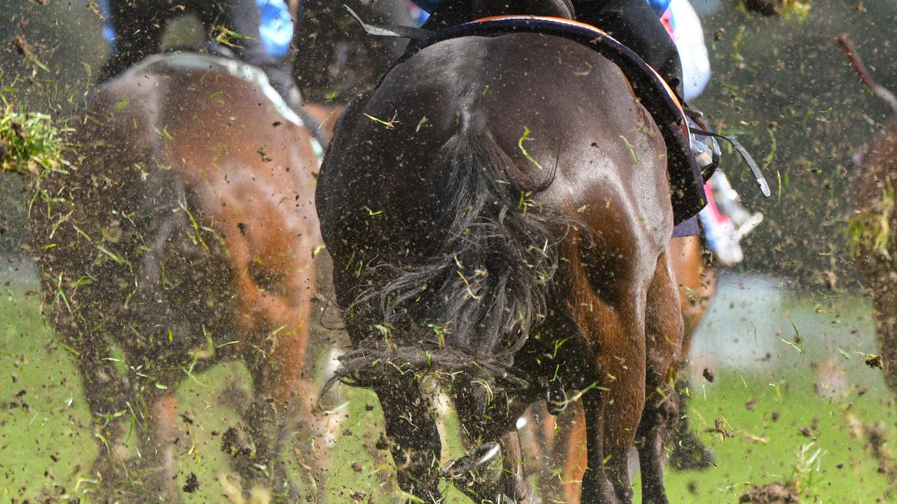 Cranbourne Racecourse was the scene of tragedy this morning. File image: AAP/Vince Caligiuri