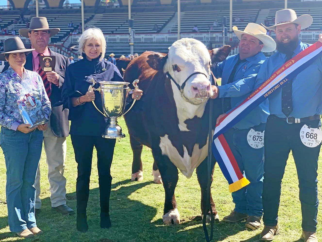 HEREFORD HEROES: Grand champion bull, Advance N142 with Isaac Billiau and Tom Nixon (end right) from Devon Court Beef, Drillham.