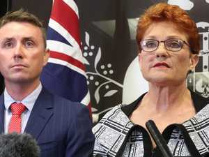 Hanson milks Labor support for dairy bill