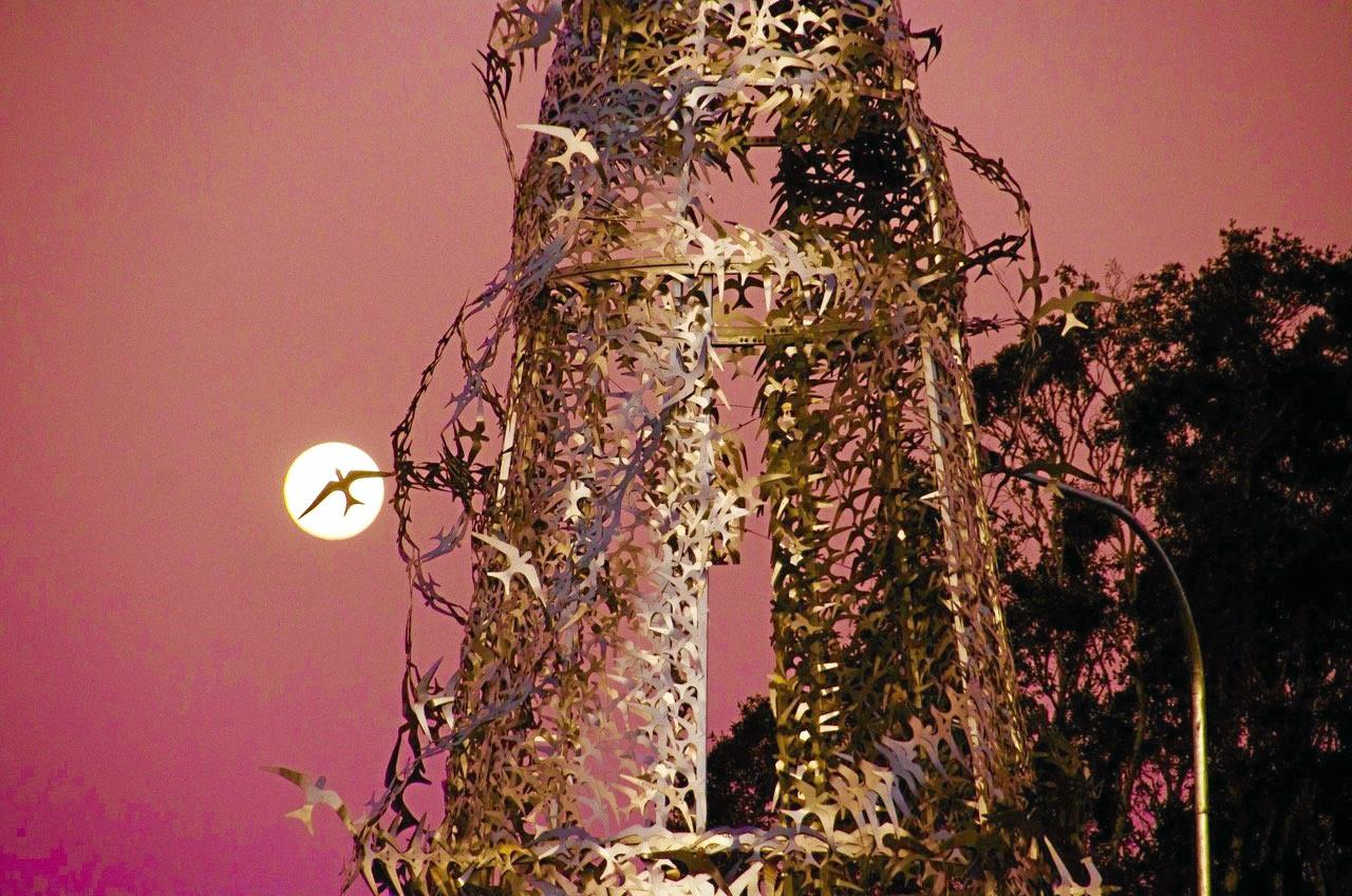 SILVER SOUVENIR: A bird from the controversial lighthouse sculpture silhouetted against the full moon.