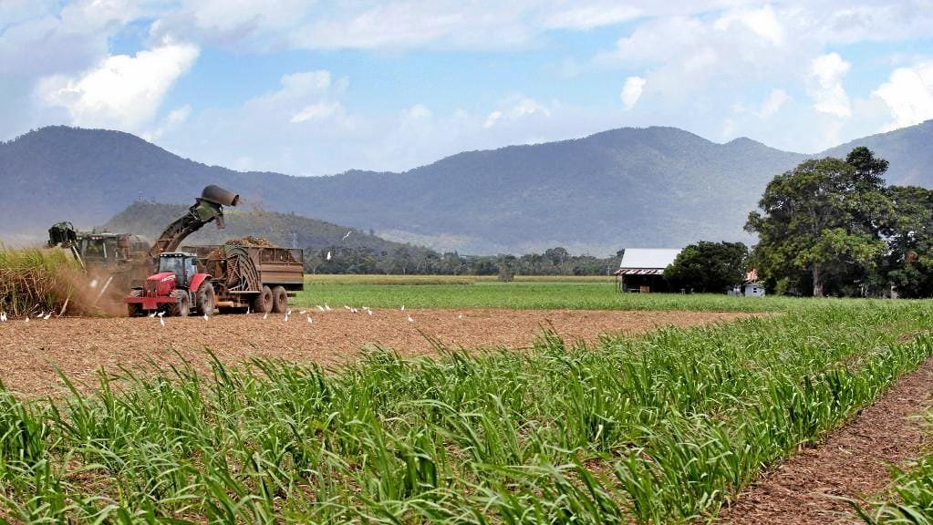 Shadow Agriculture Minister Tony Perrett has called on Mackay MP Julieanne Gilbert to stand up for sugar jobs.