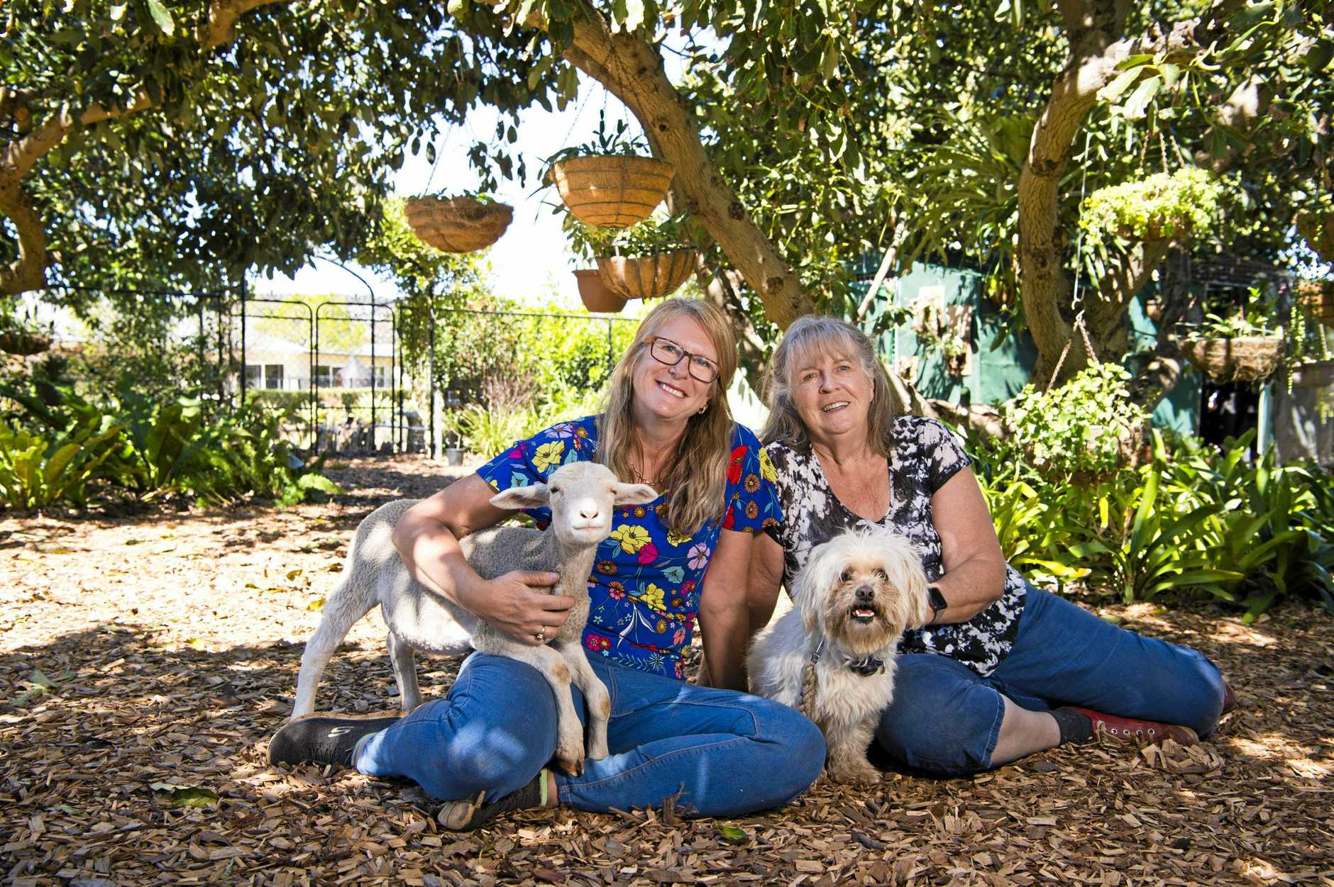 RUNS IN THE FAMILY: Jenny Skinner (left) with Kira and her mum Julie Roggeveen with Benji are not only neighbours but they have also both entered their gardens in The Chronicle Garden Competition this year.