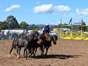 International horseman hosts equine show in the Bay