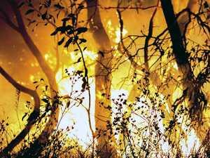 'Survival plan' call as bushfire danger hits
