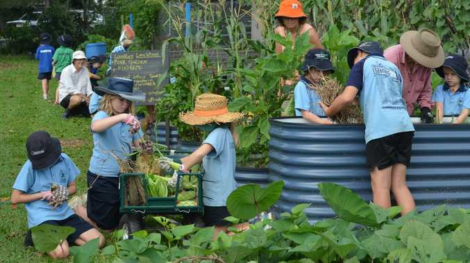 Landcare Week easy tips to help the environment
