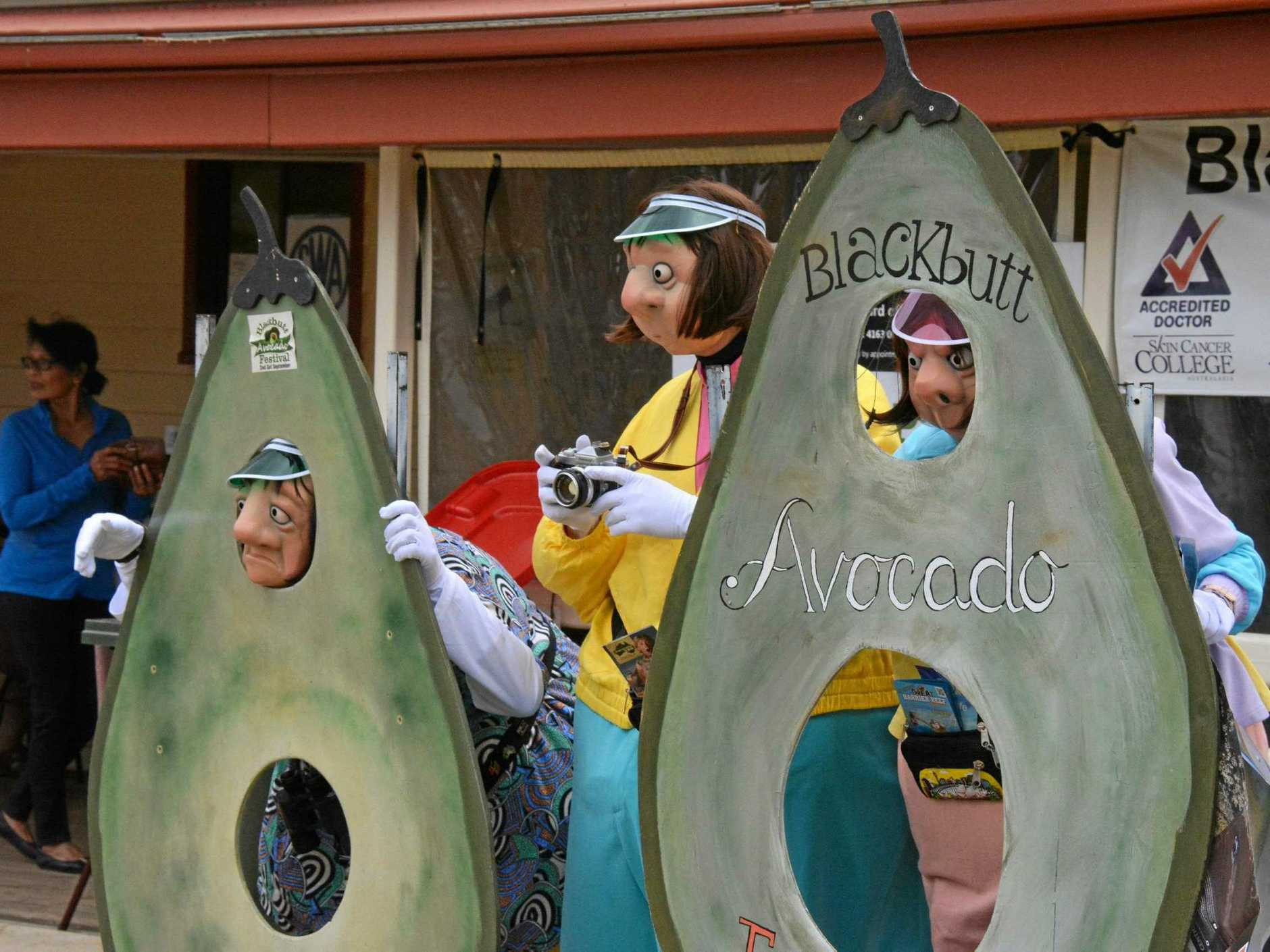 Look out for all of the avocado costumes at this year's Blackbutt Avocado Festival.