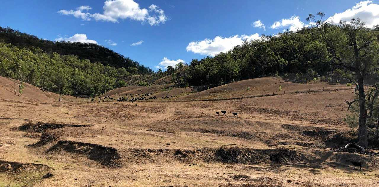 SUPPORT: The drought communities' One Stop Shop will visit Tenterfield to provide assistance accessing services to support residents affected by drought.