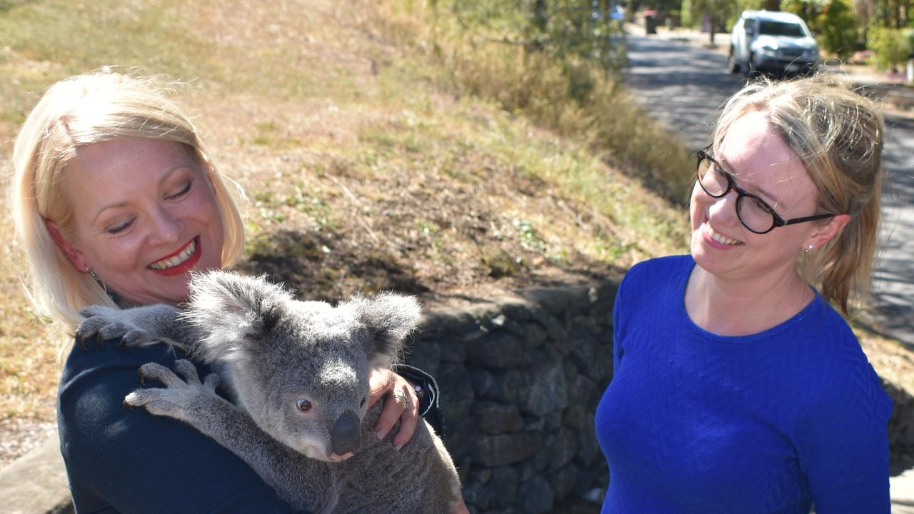 Cr Krista Adams and Cr Fiona Cunningham announce an extension to a trial program at Boundary Rd, Camp Hill, to protect koalas. Picture: Brian Bennion