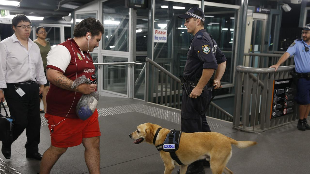 Drug dogs are a common sight at Sydney train stations.