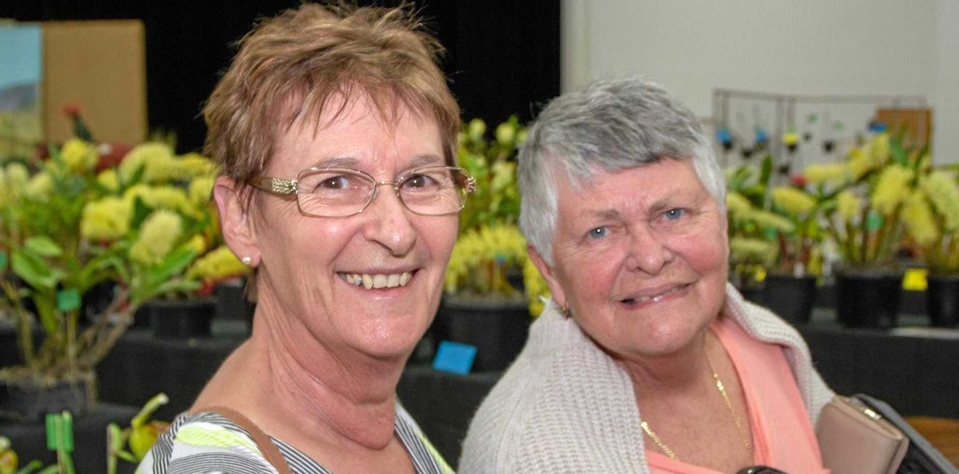 SHOW TIME: Yvonne Crosby and Joan Kickey at the Orchid Show during the 2018 Laidley Spring Festival. It's back this year from Thursday, September 12 to Saturday, September 14, with spectacular window displays and of course the parade on Saturday.