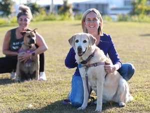 REVEALED: Top Coast pet names