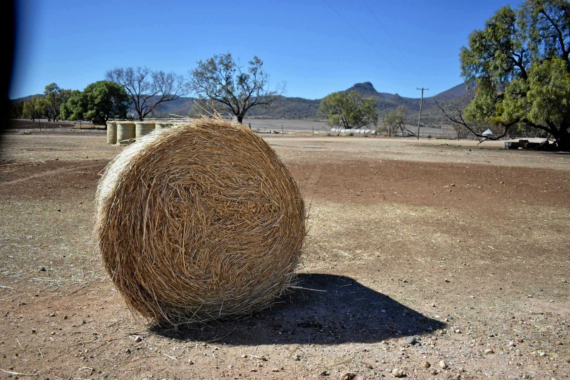 Hay and feed shortages are being seen all across the country