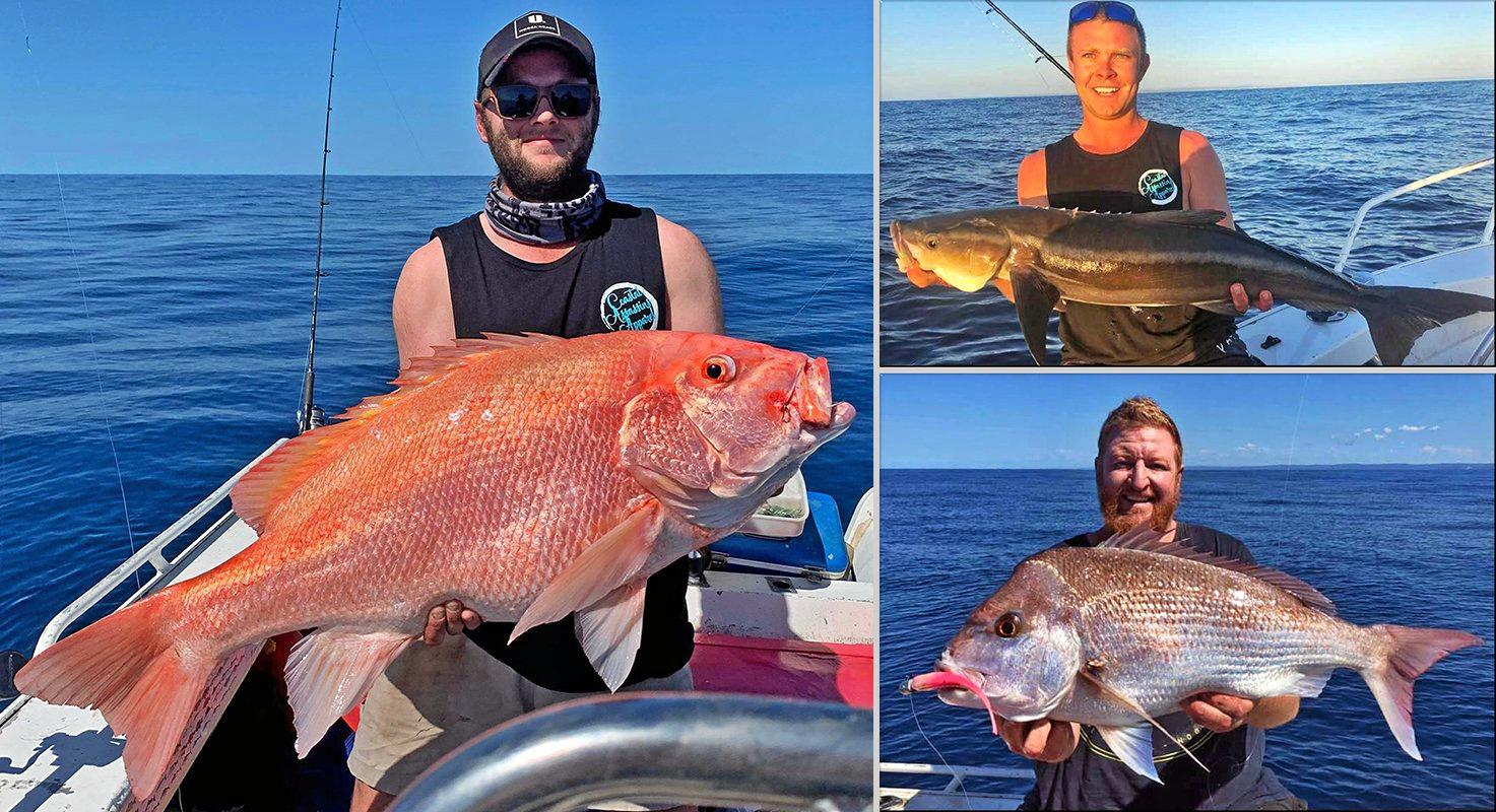 Jackson Ross and his mates Jimbo and Dave fished Double Island Point for scarlet sea perch, cobia and snapper. They were all good quality fish but Jackson's standout scarlet won him the $100 Davo'sTackle World/ChaseBaits Fish of the Week prize.