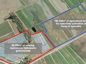Major Bundy farm site snapped up by global THC company