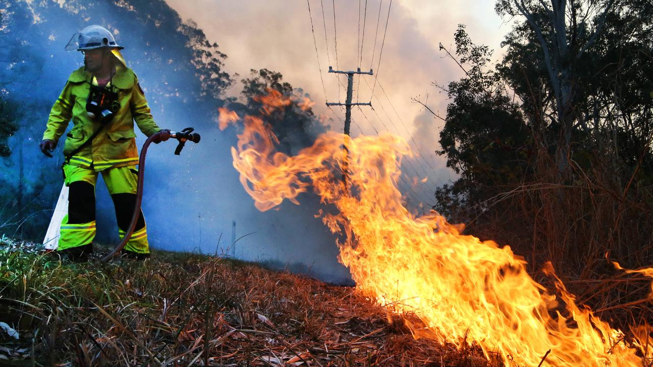 Firefighters working hard to keep a backburn under control on the esatern slopes of Mt Tamborine. Picture Glenn Hampson