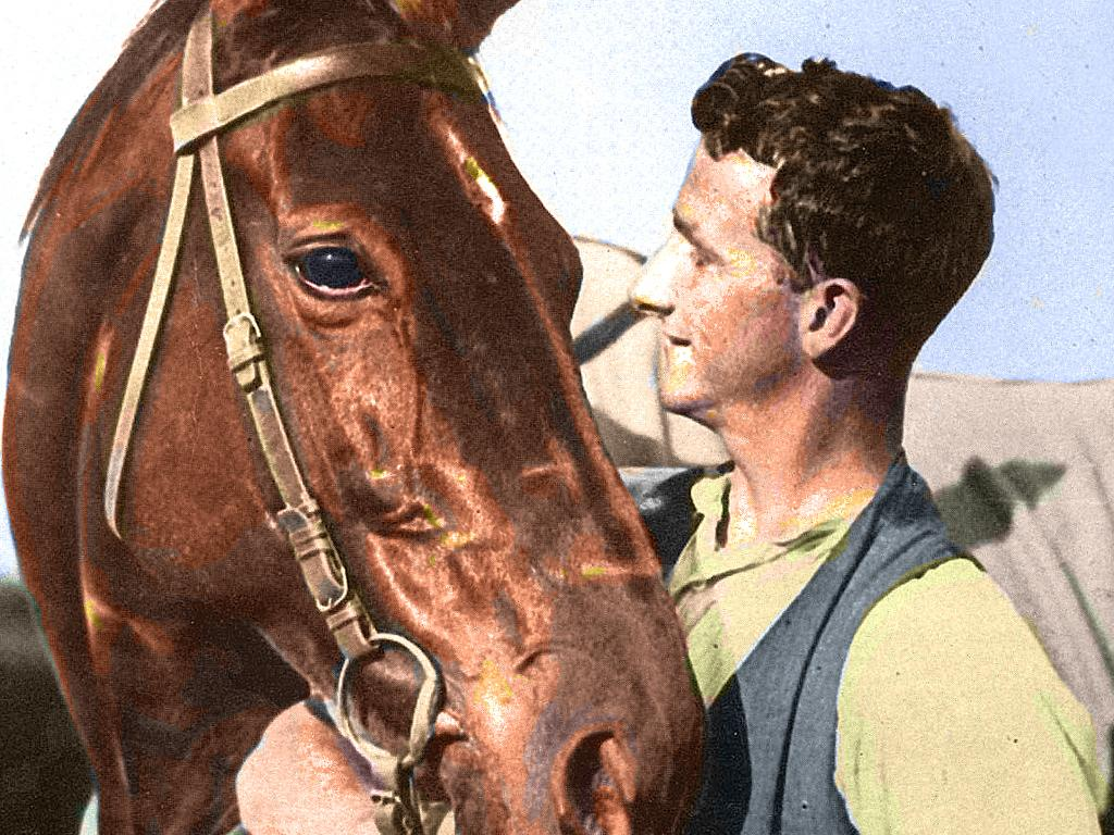 Colourised picture of Strapper Tommy Woodcock with Phar Lap