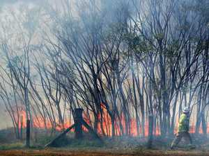 'I can't watch it': Residents unite as fire hits hinterland
