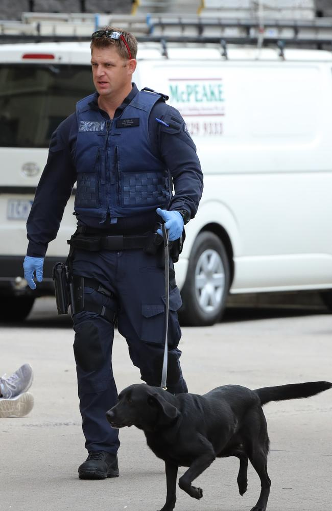 Experts say sniffer dogs should focus less on targeting users at events, and more on stopping dealers at their places of residence.