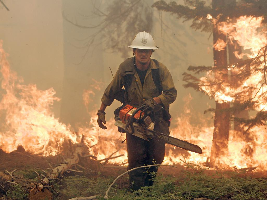 The chainsaw has become a necessary tool for firefighters in the field. Jimmie Fox clears fuel near homes in South Lake Tahoe, California. Picture: AP/John Burgess