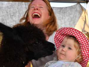 Community flocks together for annual show