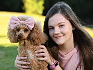 Teen fashion guru has the looks to get tails wagging