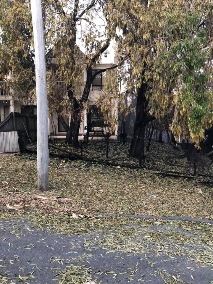 First look inside devastated Peregian bushfire zone
