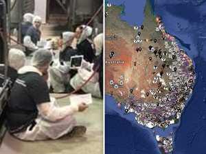 PM unleashes as 'vegan terrorists' blasted